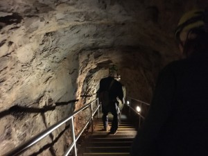 Mammoth_Wild_Cave_Tour015